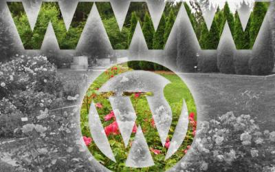 ¿Por qué una web necesita mantenimiento?